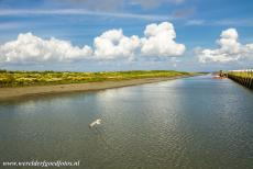 Dutch part of the Wadden Sea - Animals like seals live in the Wadden Sea, it is also a popular breeding area and tanking station for a large number of migrating...
