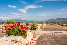 Archaeological Site of Tiryns - Archaeological Site of Tiryns: The citadel of Tiryns offers an amazing view over the surrounding landscape. The palace of Tiryns...