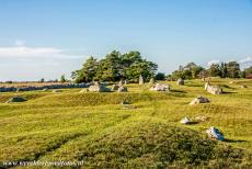Agricultural Landscape of Southern Öland - Agricultural Landscape of Southern Öland: The ancient grave field near Segerstad dates back to the Iron Age, some graves are probably...