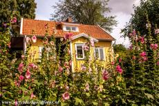 Agricultural Landscape of Southern Öland - Agricultural Landscape of Southern Öland: A wooden house in the small village of Vickleby. The picturesque village of Vickleby...
