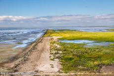 Danish part of the Wadden Sea - Danish Wadden Sea: A 9 km long causeway leads over the salt marshes of the Wadden Sea to Rømø, the southernmost Wadden Sea Island of...