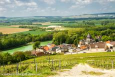 Champagne Hillsides - Champagne Hillsides, Houses and Cellars: The Village of Mareuil-sur-Aÿ viewed from the 180 metres high Mont du Gruguet, the hill is the...