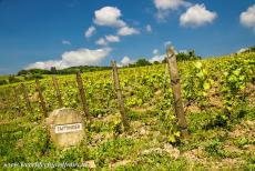 Champagne Hillsides - Champagne Hillsides, Houses and Cellars: A stone marker in one of the vineyards near the village of Hautvillers. Along the roads in...