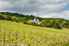 Champagne Hillsides - Champagne Hillsides, Houses and Cellars: The Abbey Church of Hautvillers is surrounded by rolling vineyards. The village of Hautvillers...