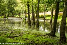 The par force hunting landscape in North Zealand - The par force hunting landscape in North Zealand: The mysterious Dousbad Swamp. Over the last four hundred years, the trees have been allowed to...