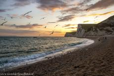 Dorset and East Devon Coast - The Dorset and East Devon Coast, also known as the Jurassic Coast. The Jurassic Coast stretches with a total length of 155 km along the southwest...
