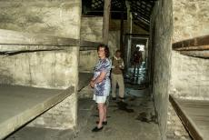 Auschwitz - Birkenau - Auschwitz - Birkenau: One of the remaining prisoner barracks. The prisoner barracks were overcrowded, dirty and swarmed with insects and...