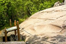 Rock Drawings in Valcamonica - Rock Drawings in Valcamonica: The rock number 6 in the Rock Art Park of Foppe di Nadro represents the artistic peak reached by the...