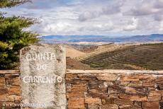 Alto Douro Wine Region - Alto Douro Wine Region: A quinta surrounded by the terraced vineyards of the Alto Douro. In Portuguese, a quinta is a wine producing estate. The...